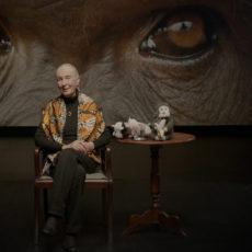 Jane Goodall anima a las niñas que quieran ser científicas.